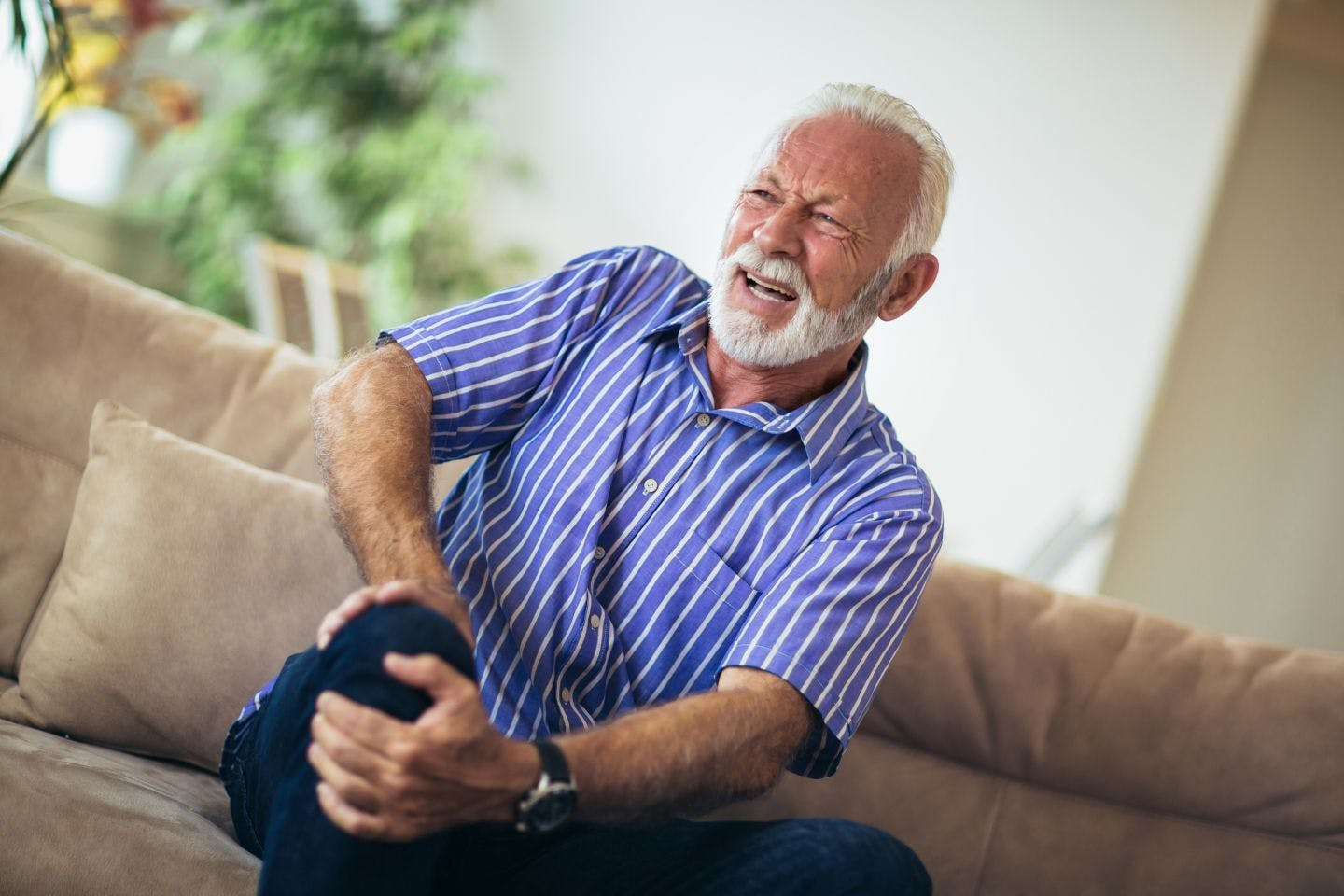 Capitol Physical Therapy | Chronic Pain